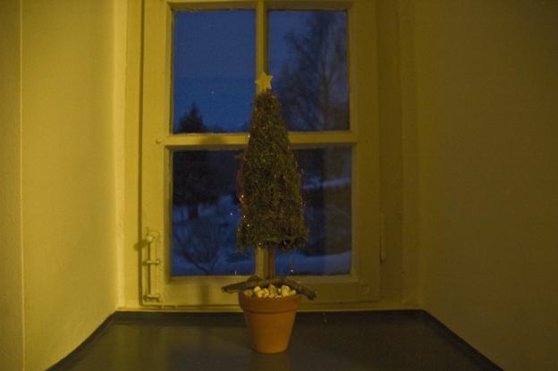 ui ui ui alles voller weihnachtsdeko fiftyfiftyblog. Black Bedroom Furniture Sets. Home Design Ideas