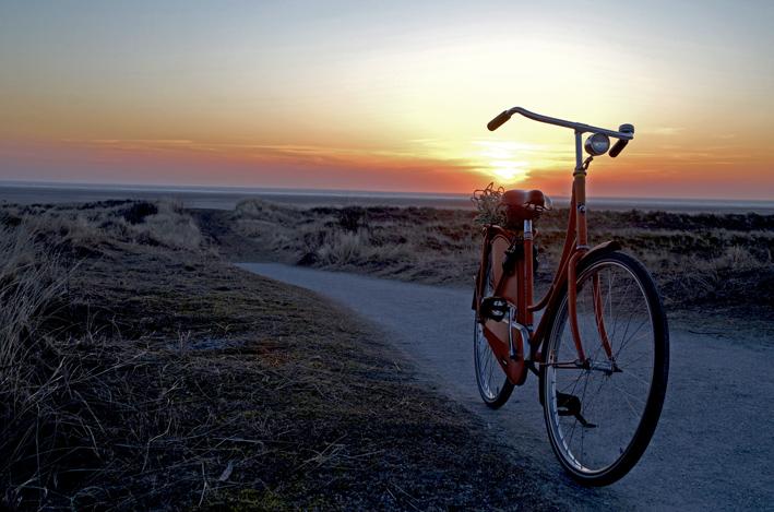 schier_fahrrad_red