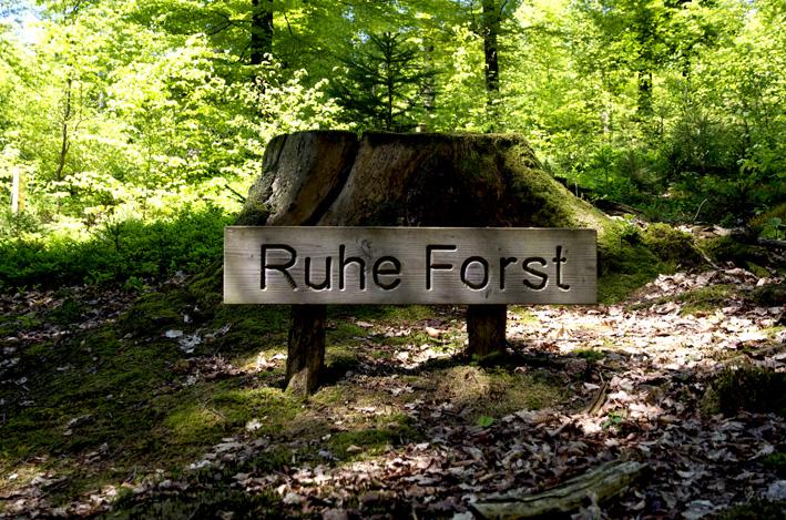 Ruhe Forst 1_red
