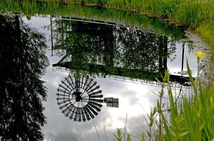 mirror. 2013