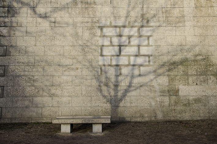 Seine_Schatten