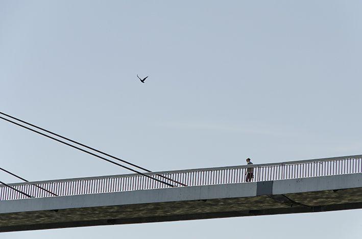 Neckarbrücke 2